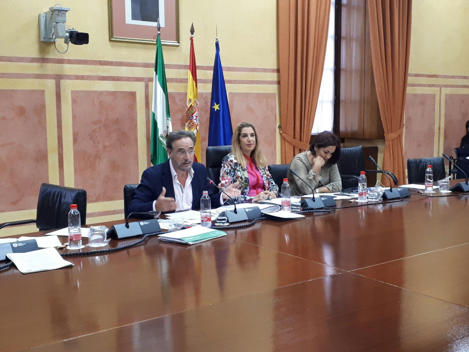 El Metro de Granada consolida su demanda con 25.000 viajeros diarios y eleva en un 17% el uso del transporte público