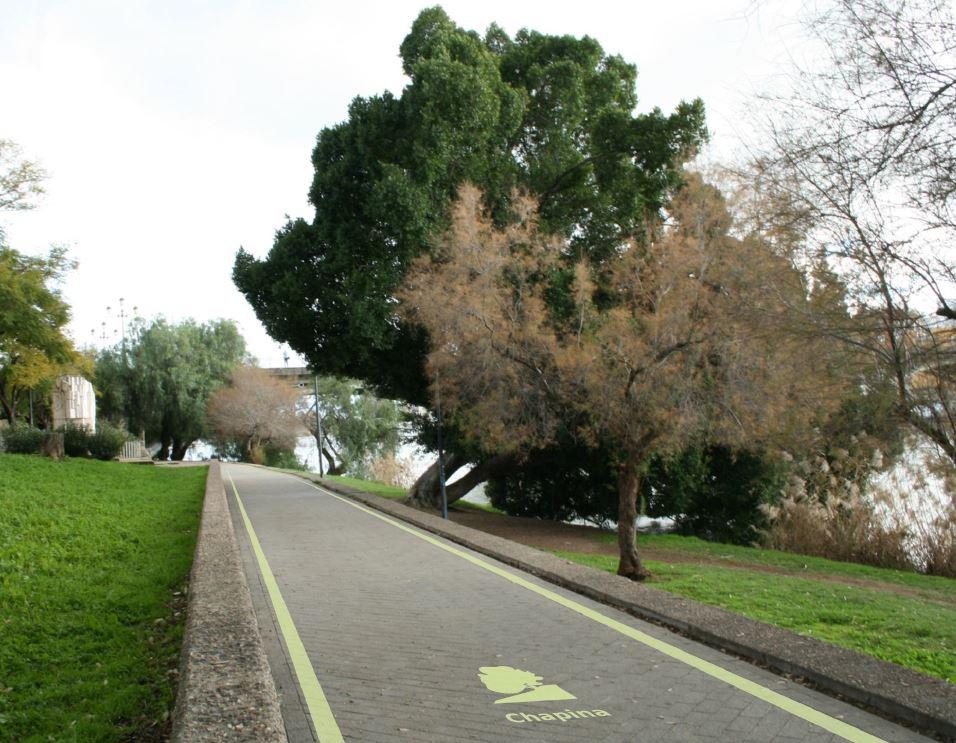proyecto de ruta cicloturista en la dársena del río Guadalquivir y en la zona de la antigua muralla de Sevilla