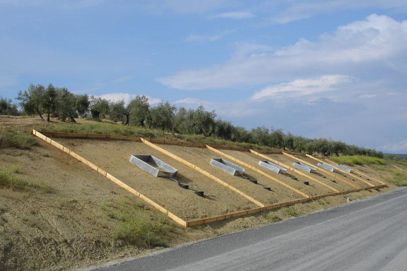Utilización de lodos de depuradora en los taludes de las carreteras.