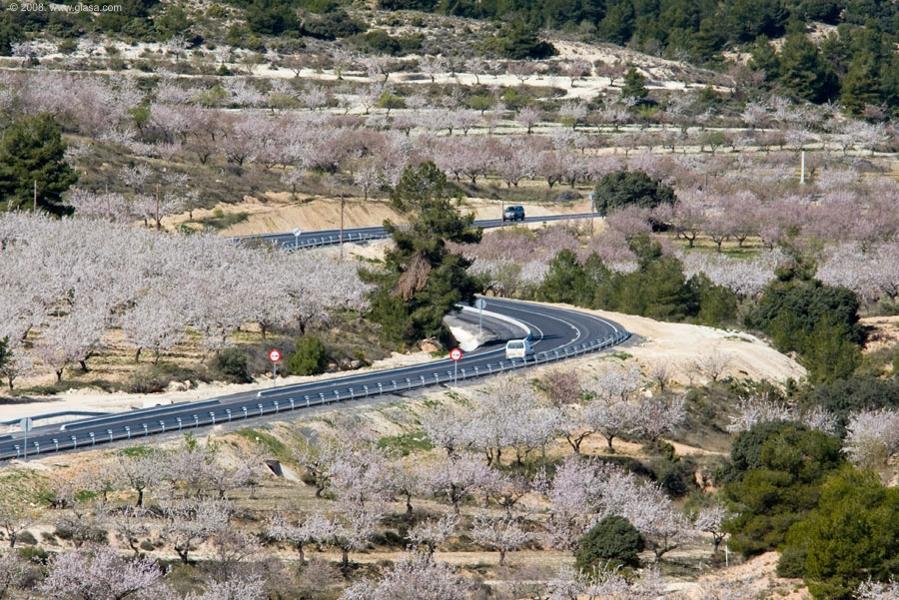 Imagen de la carretera A-317 en la comarca de Los Vélez, que conecta con la A-327 (Santa María de Nieva) a la altura de Vélez Rubio, en la A-92.