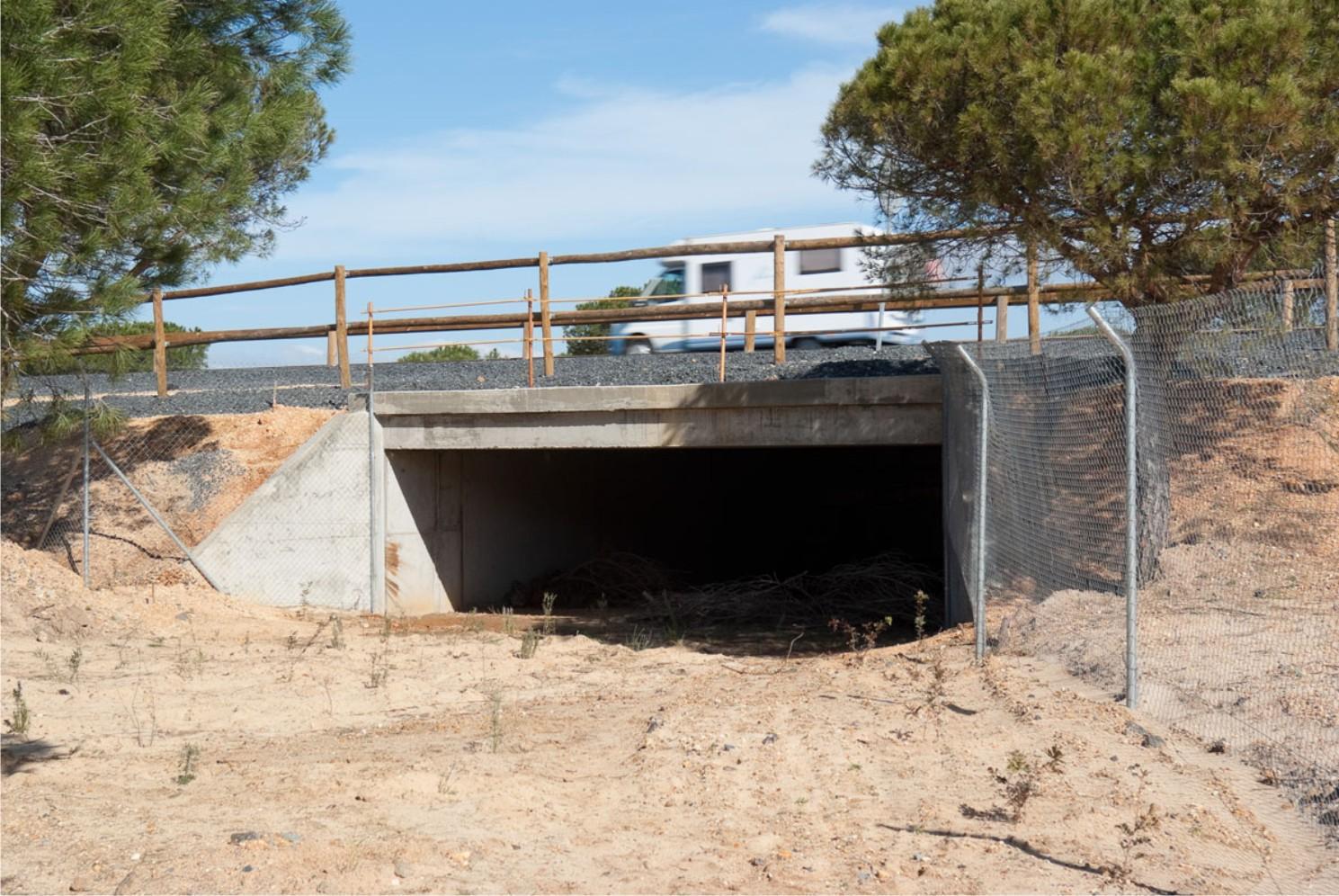 En la foto, la imagen de un paso inferior construido en la A-494 de Mazagón a Matalascañas.