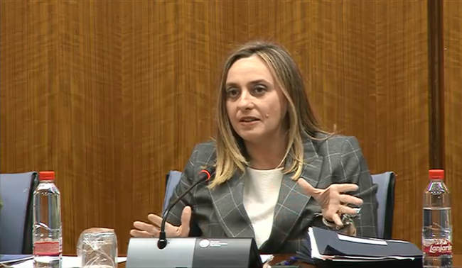 La consejera de Fomento, Marifrán Carazo, durante su comparecencia en la comisión parlamentaria